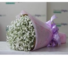 Bó hoa baby - DH56